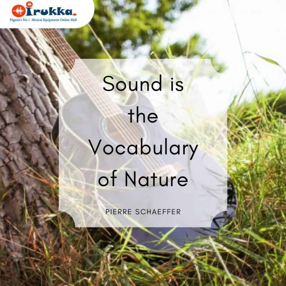 Sound is the Vocabulary of Nature